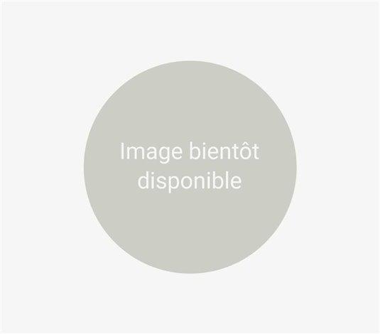 Fagotini basilic / comté